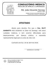 elcy guidotti.docx