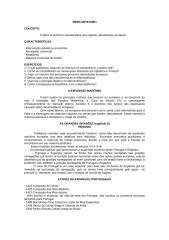 mercantilismo + expansão marítima.doc