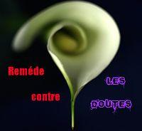 http://dc118.4shared.com/img/oK7H_da5/s7/0.021513212982335328/remde_contre_les_doutes.png