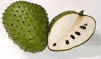 soursop-as-medicine